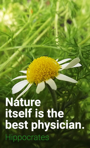 Nature is a natural physician